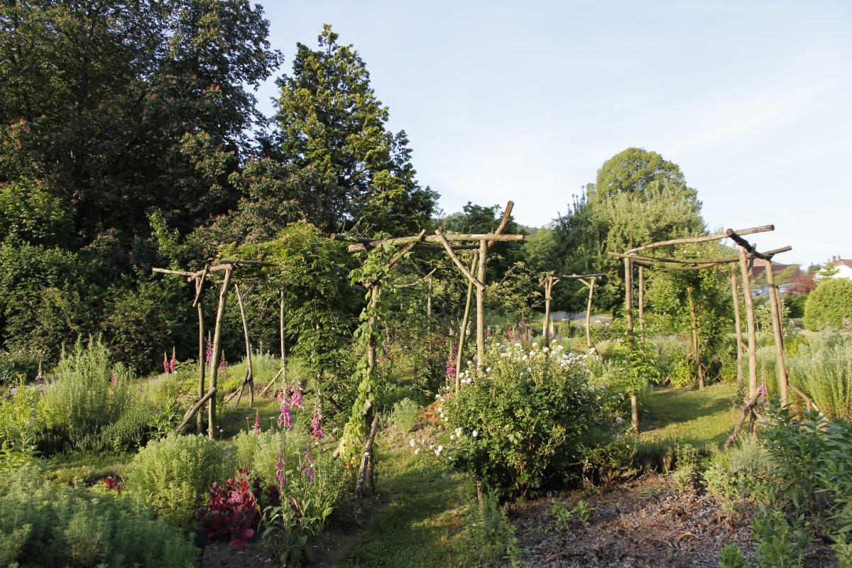 Jardin des aromatiques plantes m dicinales villa burrus for Les plantes de jardin